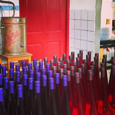 Bonaire Vista Tours: Cadushy Distillery