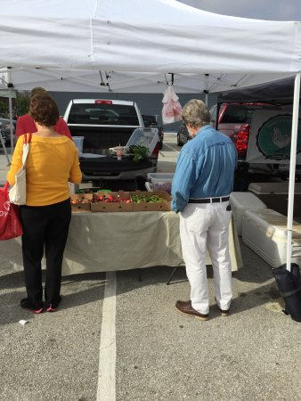 Tomball Farmers Market