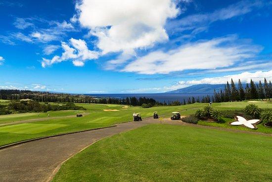 Kapalua Plantation Course: PGA challenge