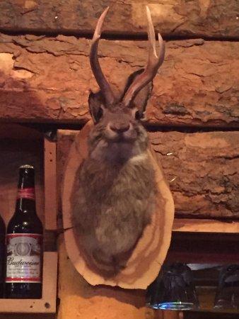 Edwards, Colorado: photo1.jpg