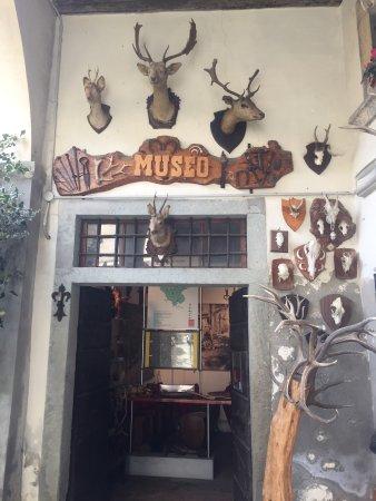 Museo del Bosco e della Montagna