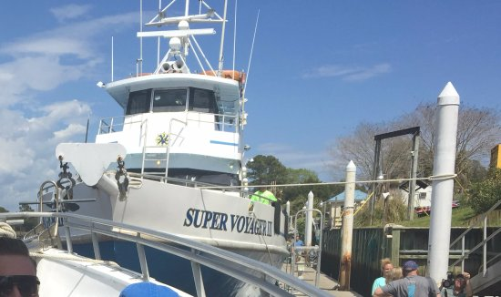 Voyager Fishing Charters Boat Tours