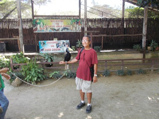 """Perai, Malezya: With one of like the three show birds on my arm (after the """"bird show"""")"""