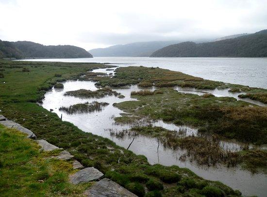 Foto de The Mawddach Trail