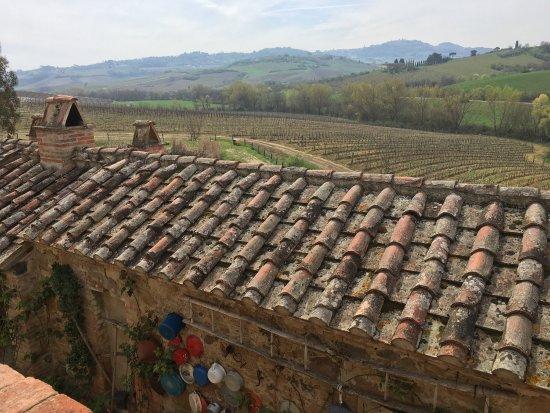 Torrita di Siena, Italia: photo0.jpg