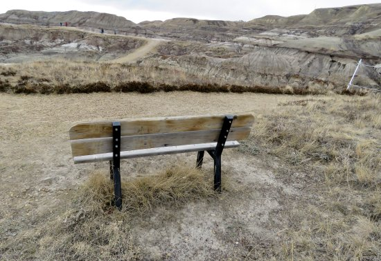 Royal Tyrrell Museum of Palaeontology: View bench on the Badlands Trail