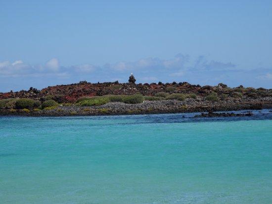 Isla de Lobos: crystal clear waters on Lobos