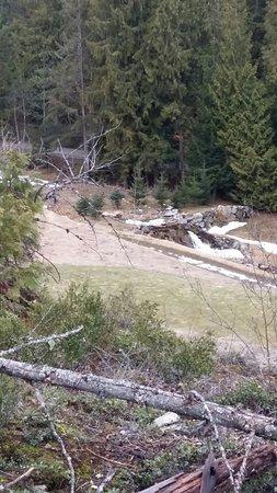 Salmon Arm, Canada: Canoe Creek Golf Course