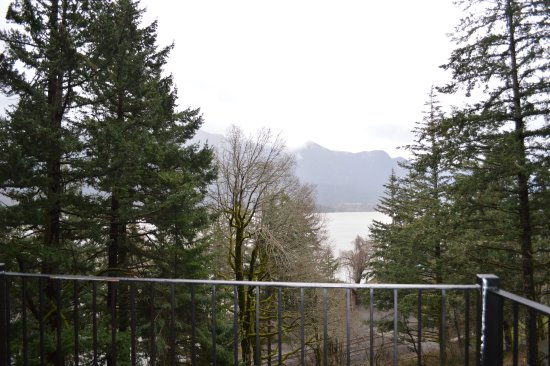 ‪‪Skamania Coves Resort‬: Great view from the deck.‬