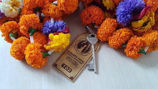Namaste Nepal Hotels and Apartment : IMG_1491149981259_large.jpg