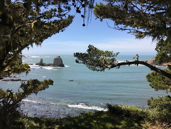 """The Sea Ranch, Californie : View of the """"College Student"""""""