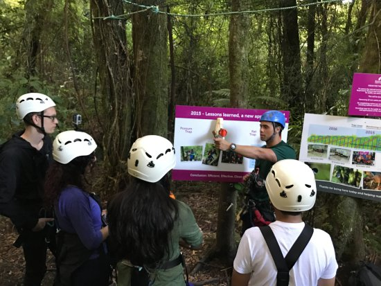 Rotorua Canopy Tours: Great education about the effort to preserve the NZ wildlife