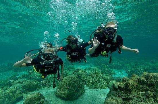 1-Day Discover Diving in Ko Lanta
