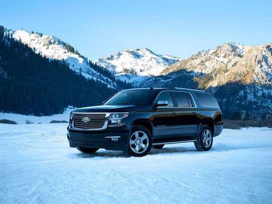 Alpine North Limousine