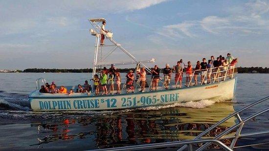 Surf S Up Dolphin Cruises The Kahuna