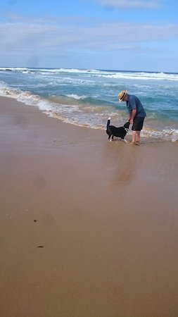 Seaspray, Austrália: dog and Beach, what else matters?