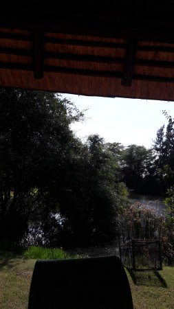 Ngwenya Lodge-bild