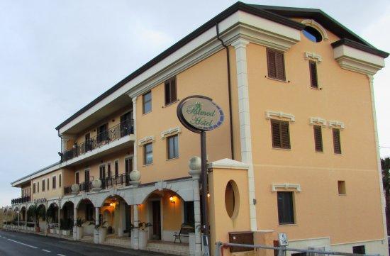 Palmed Hotel