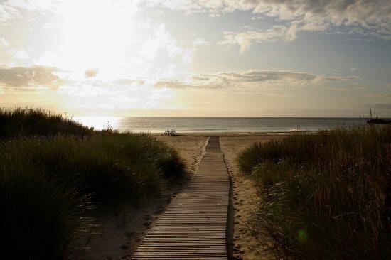 Ålbæk, Danmark: Beach nearby