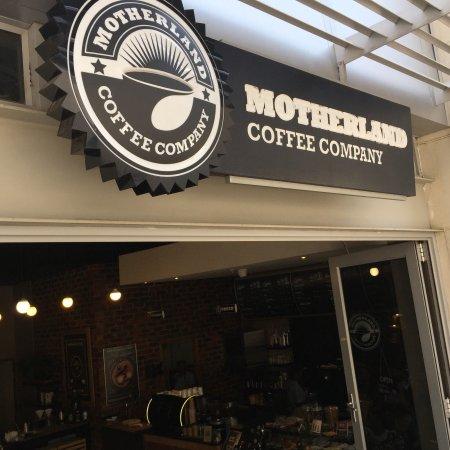 Motherland Coffee Company Rosebank