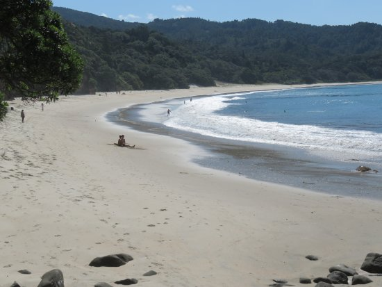 Whangapoua, Nouvelle-Zélande : New Chum beach: quieter at other end
