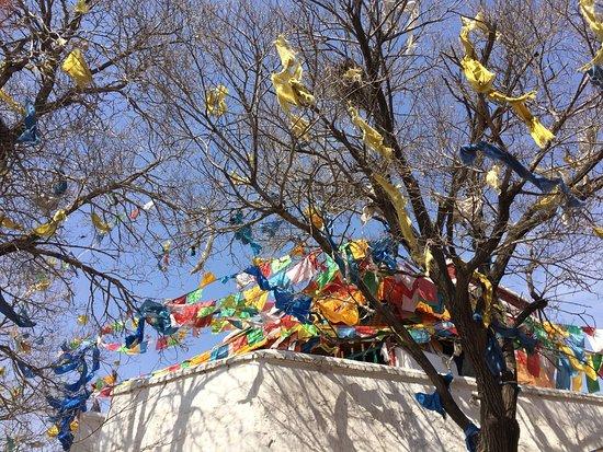 Wudang Zhao Monastery: photo2.jpg