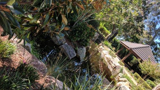 Urangan, Australia: IMG_20170402_131647_large.jpg