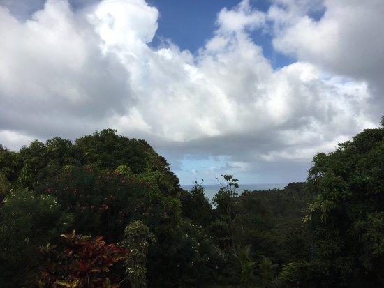 Calibishie, Dominica: photo4.jpg