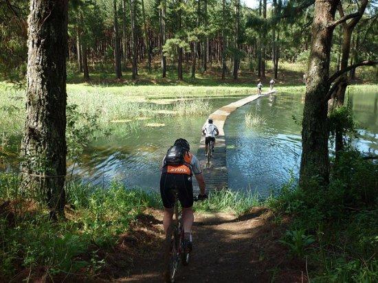 Kokstad, South Africa: Mountain Bike Trails