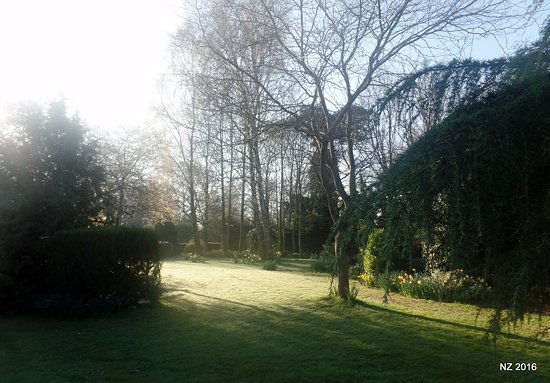 Crostwick, UK: Lovely grounds to the side.