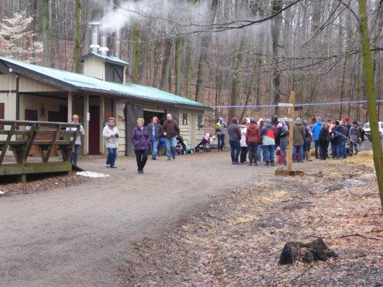 Purple Woods Conservation Area