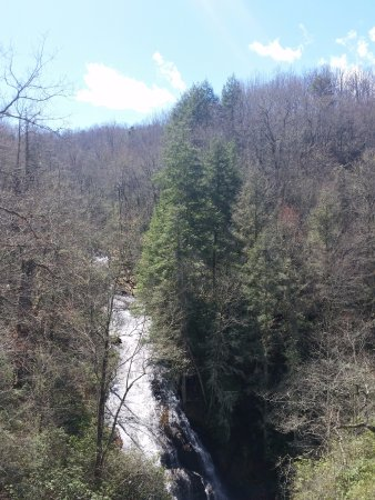 Ash Grove Mountain Cabins & Camping: Waterfall about 2 miles away