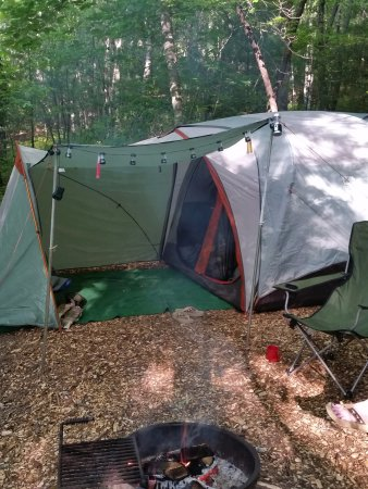 Ash Grove Mountain Cabins & Camping: My tent site from last years visit.