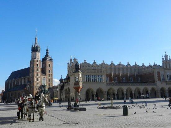 Krakow Tour Guide KraKkos