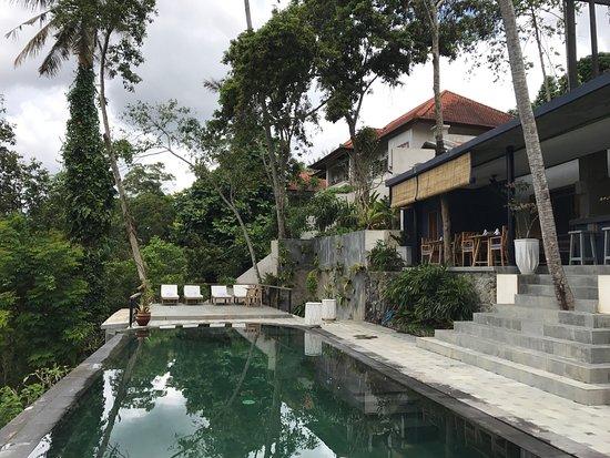 Picture of amora ubud boutique villa ubud for Ubud boutique accommodation