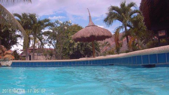 Dolphin-House Resort-SPA-Diving : photo0.jpg