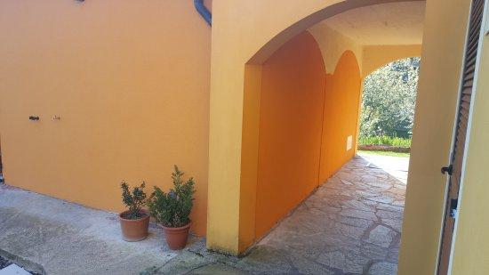 Carrodano, Italia: 20170403_084246_large.jpg