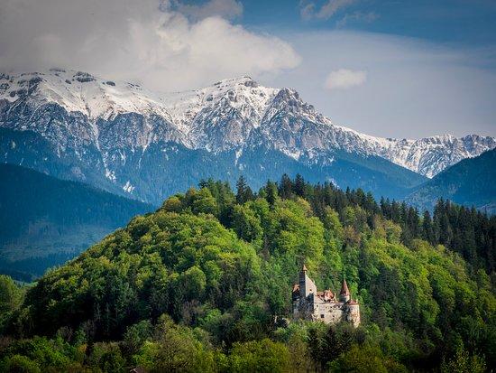 https://media-cdn.tripadvisor.com/media/photo-s/0e/dc/92/45/bran-castle.jpg