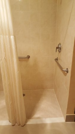 Econo Lodge Busch Gardens: Handicap shower