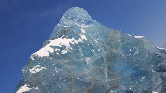 Svalbard Husky: Fantastisk naturopplevelse og veldig godt arrangert..😊