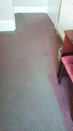 Ambassador Hotel: Dirty and old carpet in the room