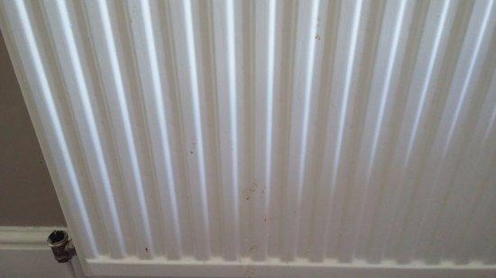 Ambassador Hotel: Dirty radiator, no temperature valves