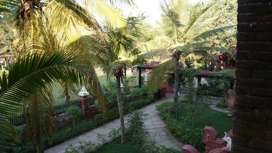 Thazin Garden Hotel: Vue de la chambre sur le jardin