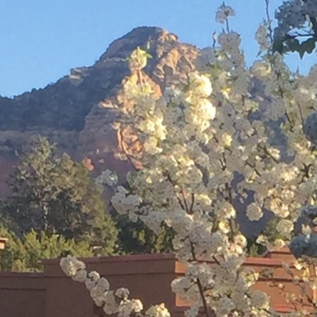 Staff, location, and amenities all you need while in Sedona!