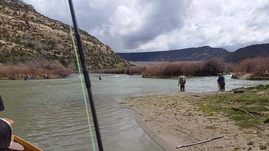 Picture of animas valley anglers guided fly for Durango co fly fishing