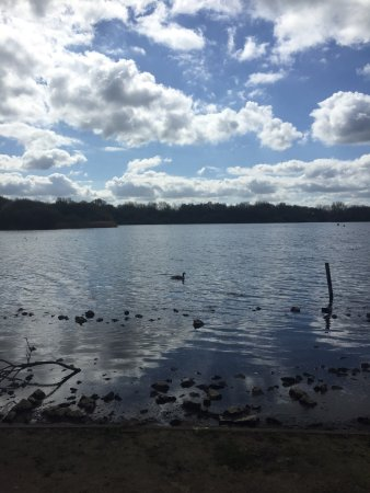 Pennington Flash Country Park: photo0.jpg