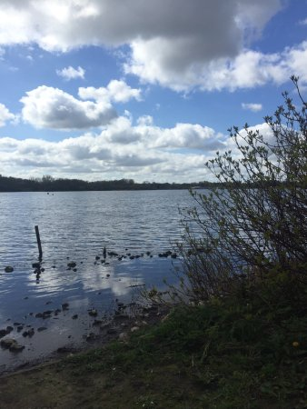 Pennington Flash Country Park: photo1.jpg