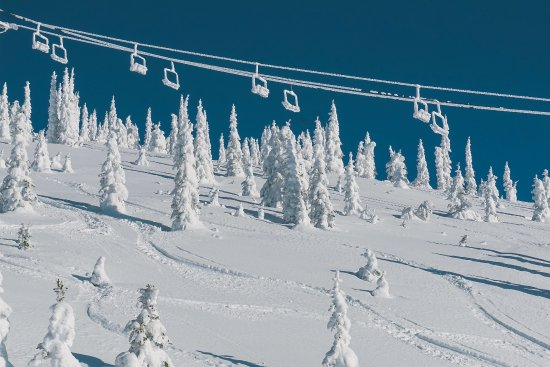 Whitefish Mountain Resort: Chair 5 on a bluebird powder day