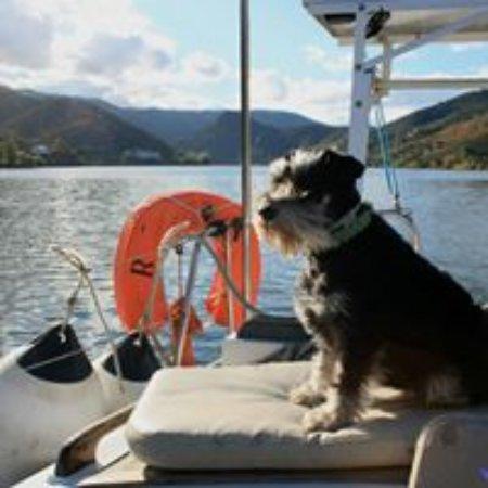 Anima Durius Douro River Cruises : Luna, the first mate.