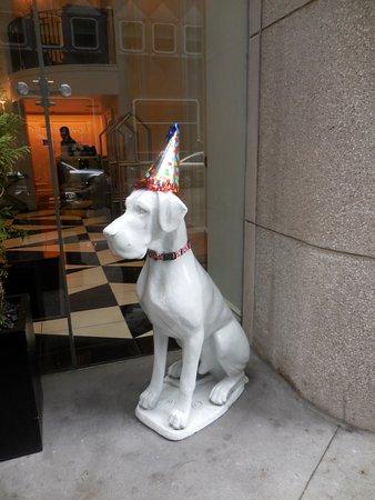 Kimpton Hotel Monaco Pittsburgh: Friendly dog greets you outside